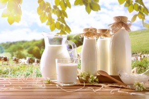 Glass containers filled with cow milk in a meadow